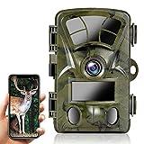 Ctronics WLAN Wildkamera mit Bewegungsmelder 4K 20MP, Eingebaute WiFi Jagdkamera 0.2s Trigger, Wildtierkamera Infrarot Nachtsicht, 120° Weitwinkel, Unterstützt 512GB SD-Karte, IP66 Wasserdicht
