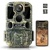 4K 24MP WiFi Bluetooth Wildkamera Low Glow IR Nachtsicht Jagd Wildkamera mit 120° 65ft Motion Activated 0.2s Auslösegeschwindigkeit IP65 Wasserdicht